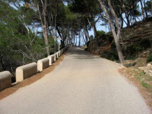 Laufen in Alcudia