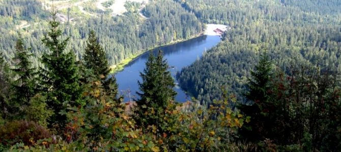 Auerhahntrail statt Arberland Ultra Trail
