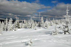 Skitour Großer Rachel