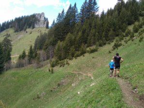 Bizau Trail 2018